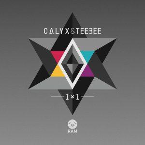 calyx-teebee-1x1